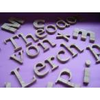 木製切文字アルファベット(英字) 栗5cmの木の文字