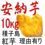 安納芋 訳あり 10kg 種子島産  日本一の安さに挑戦中!送料上乗せしても絶対お得。もちろん美味しさも保障します。更にさつまいも粉200g無料進呈中