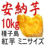 安納芋 種子島産さつまいも・チビころ(ミニ・2S)/10kg /子供応援企画 だからこそ日本一の安さに挑戦中!送料上乗せしても絶対お得。
