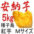 安納芋 Mサイズ/5kg/種子島産/贈り物には最適。だからこそ日本一の安さに挑戦中!送料上乗せしても絶対お得。更にさつまいも粉200g無料進呈中