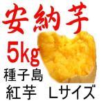 安納芋 種子島産さつまいも・Lサイズ/5kg/ 密がたっぷりで旨い。だからこそ日本一の安さに挑戦中!送料上乗せしても絶対お得。福島農園の自信作