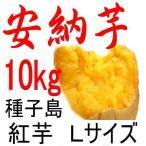 安納芋 Lサイズ/10kg/種子島産/密がたっぷりで旨い。だからこそ日本一の安さに挑戦中!送料上乗せしても絶対お得。福島農園の自信作。お芋粉無料進呈中