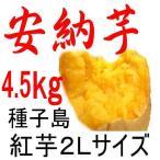 安納芋 種子島産さつまいも・2Lサイズ/4.5kg/密がたっぷりで安納芋 種子島産 の王様。収獲量の少ない貴重な1品です。それでも日本一の安さに