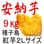安納芋 種子島産さつまいも・2Lサイズ/9kg/密がたっぷりで安納芋 種子島産 の王様。収獲量の少ない貴重な一品です。それでも安さ日本一に挑戦