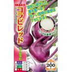 ナント種苗 キャベツ コラビレッド(コールラビ)2000粒