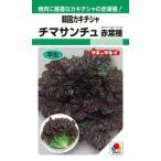 タキイ種苗 レタス チマサンチュ(赤葉種)20ml