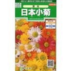 日本小菊 コギク  混合 種子  サカタのタネ