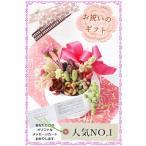 多肉植物のぽってりポット  可愛い 寄せ植え 贈り物 ギフト おしゃれ 白鉢  母の日ギフト花