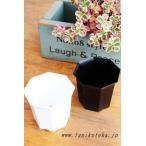 シャトル鉢2.5寸 10個 六角 白鉢 黒鉢 苗用 間口7.5cm 多肉植物にピッタリ プラスチック鉢通販 白プラスチック鉢 黒プラスチック鉢