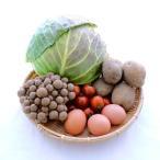 お買得お試しセット 野菜+豆腐、納豆、卵で2000円(