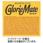 大塚製薬 カロリーメイトブロック チーズ味 20g/本 1箱(4本)