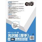 TANOSEE カラーレーザープリンタ用 光沢紙(厚手) A4 1冊(100枚)