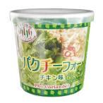 アライドコーポレーション タイの台所 パクチーフォー チキン味 22g 1セット(6個)