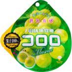 UHA味覚糖 コロロ マスカット 48g/パック 1セット(6パック) (お取寄せ品)