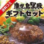 鹿児島産 黒豚 ギフトセット (お中元 ゆず ハンバーグ 餃子 ギフト プレゼント ご自宅用にもどうぞ)