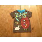 ショッピングビッツ 【メール便送料無料】【セール2,052円⇒】BIT'Z(ビッツ) もけもけさんにわとりTシャツ