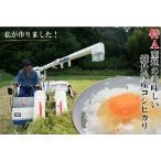 新米・京都丹後米 コシヒカリ 10kg 農家から産地直送の美味しい丹後コシヒカリをお届け/28年度産