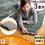 ホットカーペット 3畳 195×235 本体 電気カーペット 床暖房カーペット 暖房器具 暖房 3畳用 ダニ退治 タイマー 冬用 1670000112