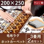 ラグ×ホットカーペット2点セット ラグ 200×250 ホットカーペット 3畳 セット  洗える 軽量 滑り止め 毛布生地 冬 カーペット 長方形 絨毯 ダニ退治 195×235