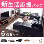 新生活応援パック6点セット 8畳 ソファ + ベッド + テーブル + テレビ台 + ラック+ ラグ200×200cm 応援セット 必要なもの 一人暮らし 家具 インテリア