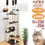 キャットタワー 高さ240〜264cm 突っ張り 猫タワー 爪研ぎ 麻紐 ねこ 猫 ネコ キャットタワー つめとぎ キャットハウス おしゃれ キャットタワー