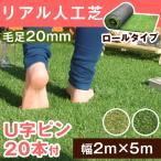 人工芝 ロール ロールタイプ リアル人工芝 芝生 2m×5m U字固定ピン20本入 芝丈20mm 5m 人工 芝 ロール 大型商品