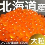 いくら 醤油漬け 500g 鮭イクラ 大粒いくら500g 北海道産 大粒 いくら醤油漬け 魚卵 北海道 新鮮 おいしい おすすめ