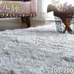 シャギーラグ - ラグ ラグマット 200×200 2畳 カーペット オールシーズン 高密度 シャギーラグ リビングマット 正方形 ホットカーペット 床暖房 防音 シンプル 絨毯