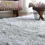 シャギーラグ - ラグ ラグマット 200×250 3畳 カーペット オールシーズン 高密度 シャギーラグ リビングマット 長方形 ホットカーペット 床暖房 防音 シンプル 絨毯