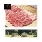 【納期目安:1週間】TYK-300 千屋牛「A5ランク」焼き肉用(バラカルビ)肉 300g (TYK300)