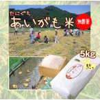 令和元年産 新米 無農薬 たにぐちのあいがも米 5キロ 真空パック 兵庫県浜坂産 5kg