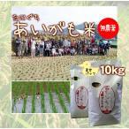 令和元年産 新米 無農薬 たにぐちのあいがも米 10キロ 真空パック 兵庫県浜坂産 10kg