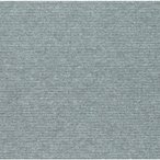 ワタナベ工業 PX3001 ワタナベ ワタナベ タイルカ-ペット シルバ- 50cm×50cm