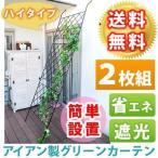 Yahoo!タンタンショップ プラス住まいスタイル DNF-270-2P アイアン製グリーンカーテン 2枚組 (DNF2702P)