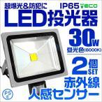 人感センサー付 LED投光器 30W300W相当 省エネ LEDライト 2個セット