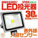 人感センサー付 LED投光器 30W 300W相当 省エネ LEDライト 防水 電球色