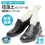 珪藻土 シューズドライプレート 靴 消臭 インソール 乾燥 ドライプレート 左右セット 除湿 脱臭 カビ対策 下駄箱 清潔