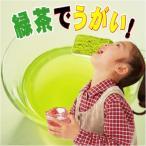 カテキン力 緑茶でうがい勝て菌   100g RCP
