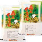 29年産 新米 熊本県産 森のくまさん 10kg (5kg×2袋) 送料無料 玄米 白米 7分づき 5分づき 3分づき つきたて米
