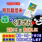 30年産 熊本県産 特別栽培米 森のくまさん 5kg 送料無料 玄米 白米 7分づき 5分づき 3分づき つきたて米