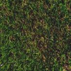 Yahoo!他安堂人工芝 〔2m×5m×H3.2cm〕 メンテ不要 耐紫外線 オランダ製 FIFA/UEFA/FIH/ITF 連盟公認 『モンテカルロ』 〔スポーツ 競技〕