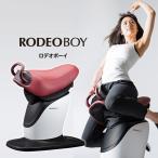 Yahoo!TBSショッピング【メーカー直販サイトより安い・送料無料】 乗馬 フィットネス マシン ロデオボーイ / FD-017 ロデオ スタイルアップ 00837680011709190311【TBSショッピング】