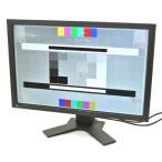 EIZO FlexScan S2402W 24インチワイド非光沢パネル、WUXGA 1920x1200ドット DVI-D/アナログRGB入力 6086h