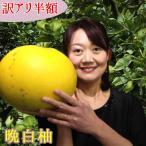 熊本 八代産 晩白柚(ばんぺいゆ)L玉 2L玉 3L サイズ 訳あり特価