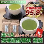 お茶 高機能品種茶 福袋 茶葉 緑茶 200g さえみどり ゆたかみどり 100×2個セット
