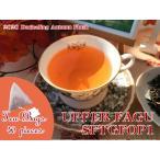 紅茶 ティーバッグ:40個 ダージリン:ギダパール茶園 オータムフラッシュ SFTGFOP1 CH MUSK DJ124/2016 茶葉 リーフ 送料無料