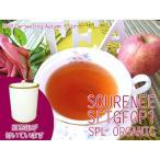 紅茶 茶葉 ダージリン:茶缶付 マカイバリ茶園 オータムフラッシュ FTGFOP1 ORGANIC EX256/2015 50g 茶葉 リーフ 送料無料