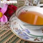 紅茶 茶葉 ダージリン:マーガレットホープ茶園 セカンドフラッシュ FTGFOP1 Muscatel 2016 50g 茶葉 リーフ 送料無料