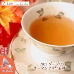 紅茶 ティーバッグ:40個 ダージリン:ネローラーズ茶園 オータムフラッシュ AUTUMN DELIGHT ND53/2016 茶葉 リーフ 送料無料