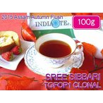 紅茶 茶葉 アッサム:スリシバリ茶園 オータムフラッシュ TGFOP1 CLONAL O260/2015 100g 茶葉 リーフ 送料無料